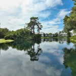Harbor Lakes Bonita Bay Real Estate